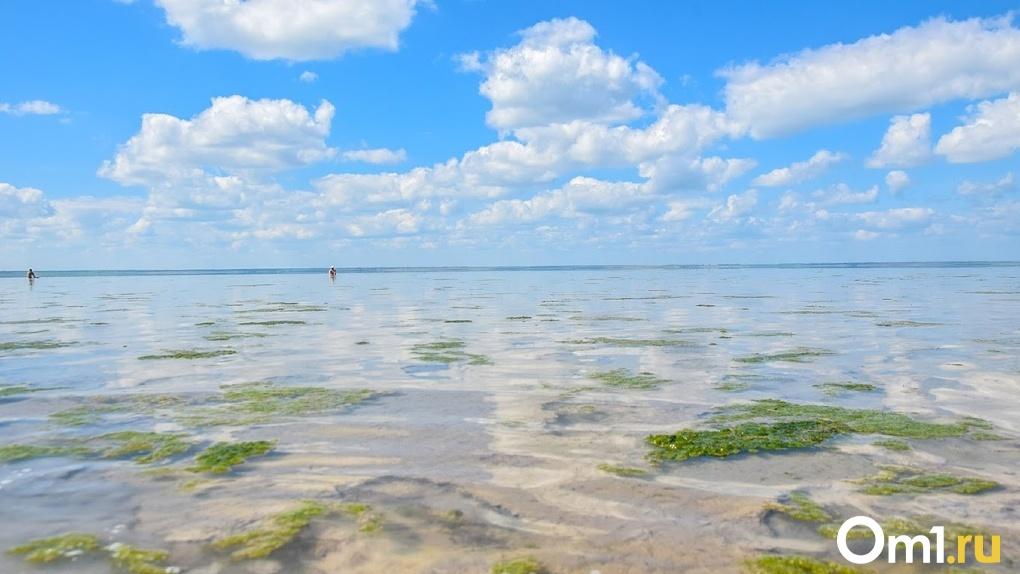 Ценные ресурсы на озере Эбейты в Омской области будут добывать в промышленных масштабах