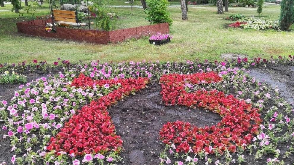 Выставки «Флора» в Омске не будет, но скверы все равно украсят цветами