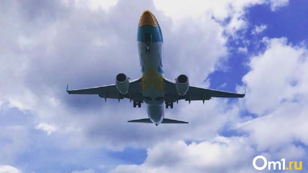 Самолёт из Новосибирска экстренно вернулся в Толмачёво из-за аварии