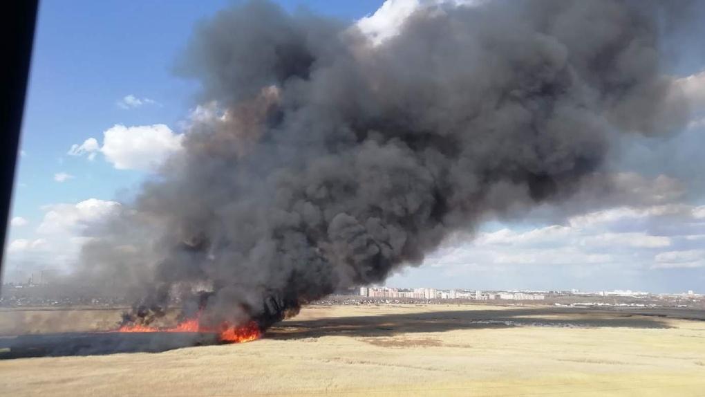 На Левобережье Омска горящая трава подбирается к дачным домикам (видео)