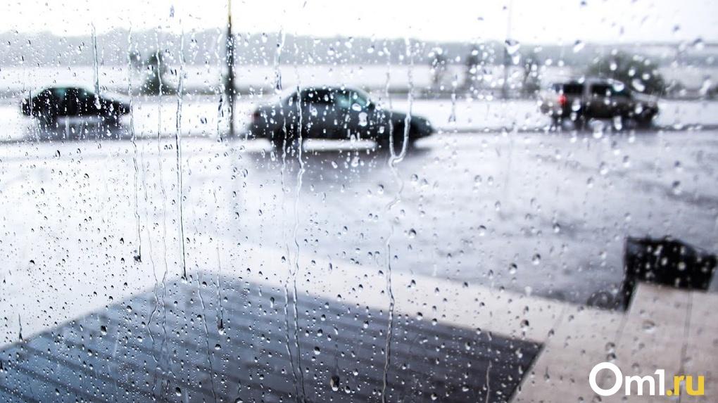 Лето встретит омичей дождями и грозами