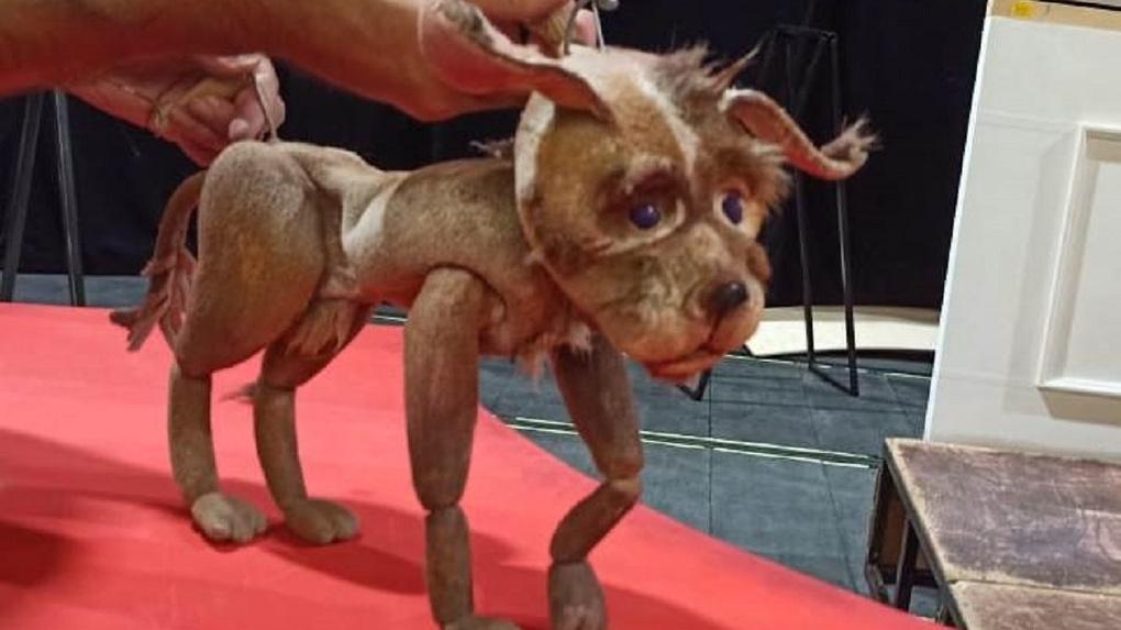 Пёс в роли Золушки: новосибирский театр кукол расскажет известную сказку на новый лад