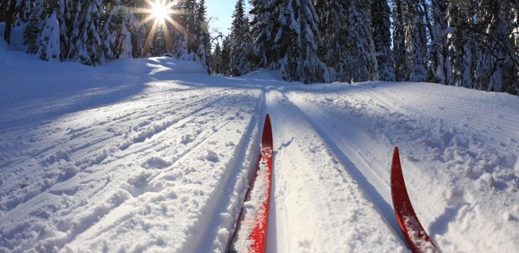 Омич взял серебро на первенстве России по лыжным гонкам