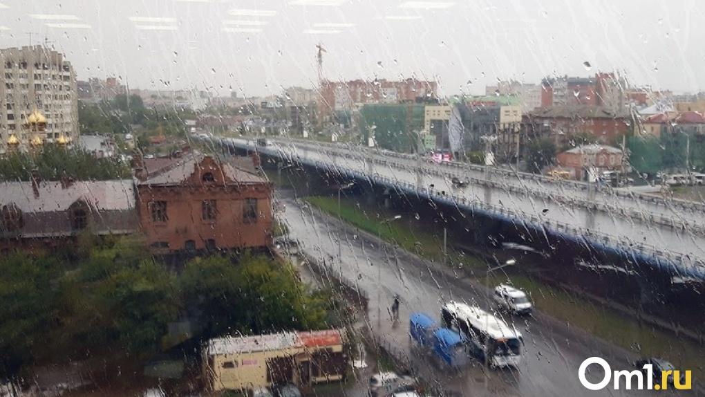 Следующая неделя в Омске начнётся с резкого похолодания и дождя