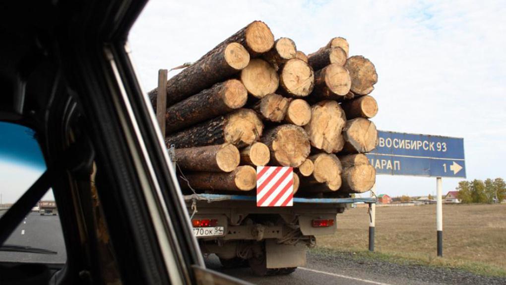 Спикер новосибирского Заксобрания не исключил ужесточения законодательства по охране леса