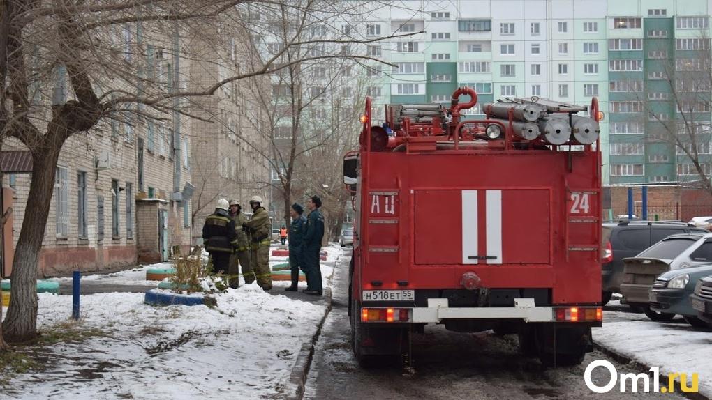 В Омске в кучах горящего мусора обнаружили два трупа