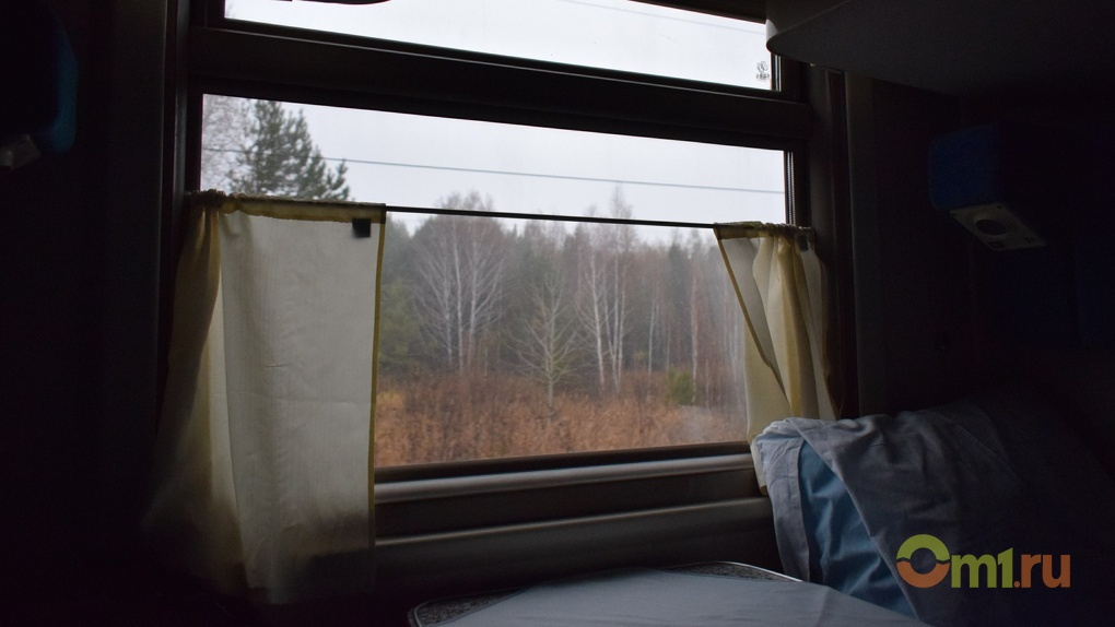 В Омской области мужчина оставил свою 6-летнюю дочь одну в вагоне ради пьянки