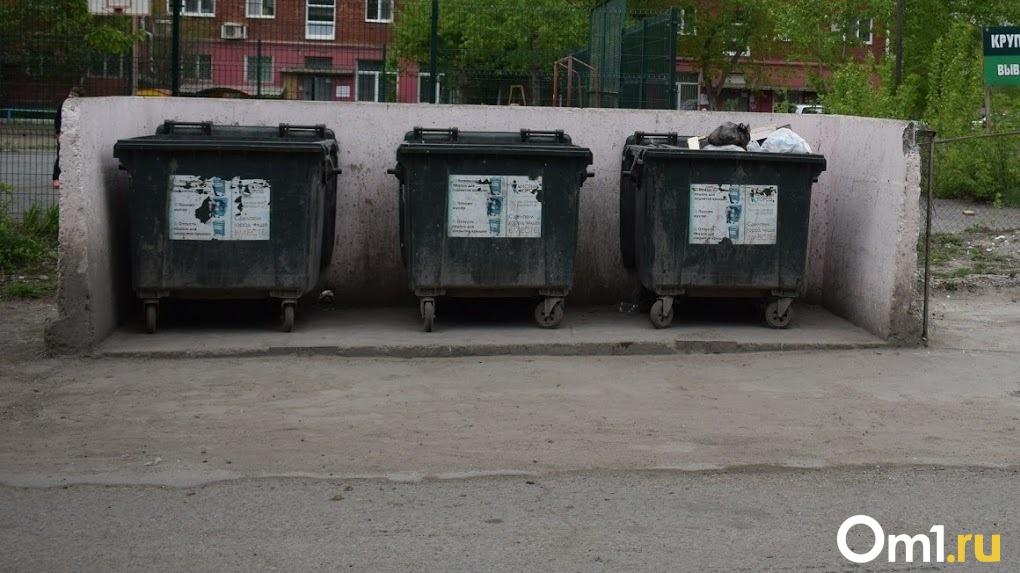 В Омске закупили жёлтые контейнеры для раздельного сбора мусора