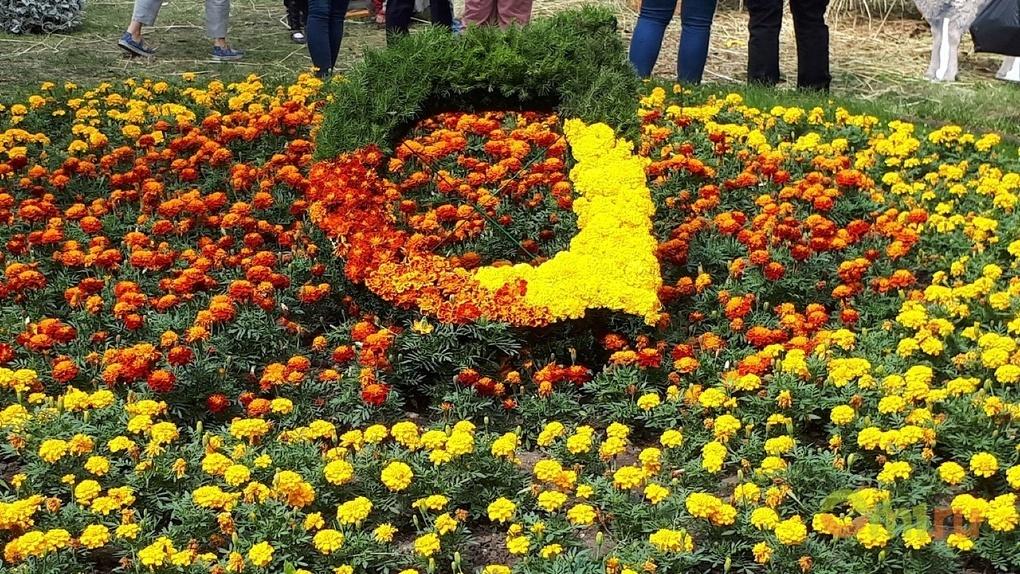 Делегация из Китая представит свою композицию на омской «Флоре»