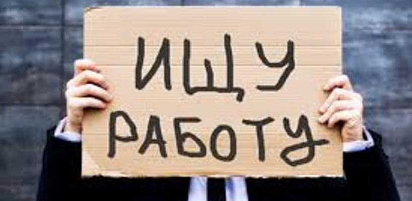 Центр занятости ищет в Омске директора для биржи труда по объявлению