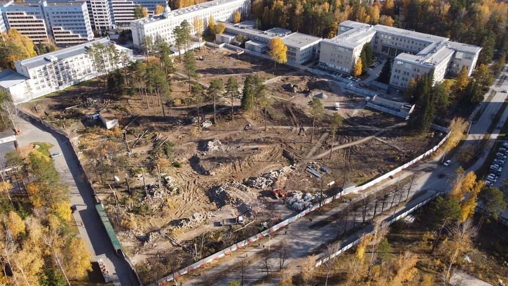 Ради строительства нового кампуса НГУ в новосибирском Академгородке вырубили деревья. Фото