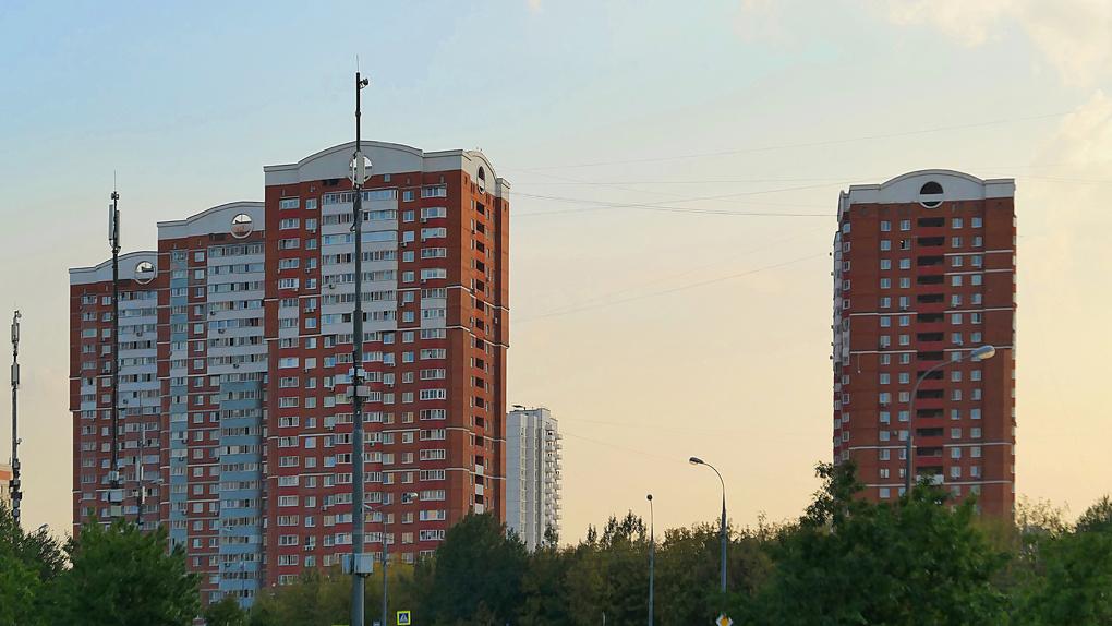 В Новосибирске риелтор обманула дольщиков новостроек на 12 миллионов рублей