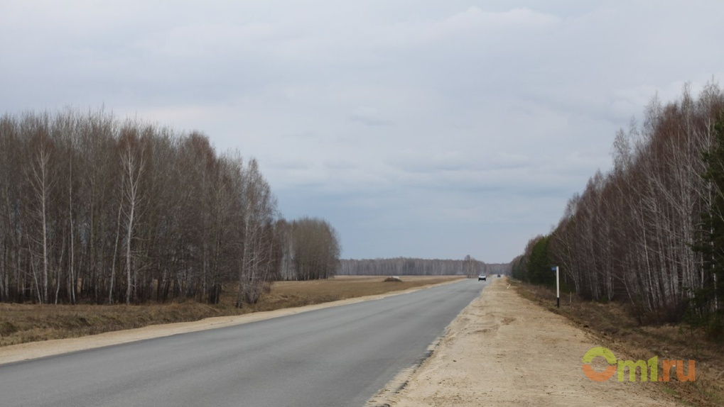 Федеральный Рослесхоз проверит Омскую область на незаконную вырубку деревьев