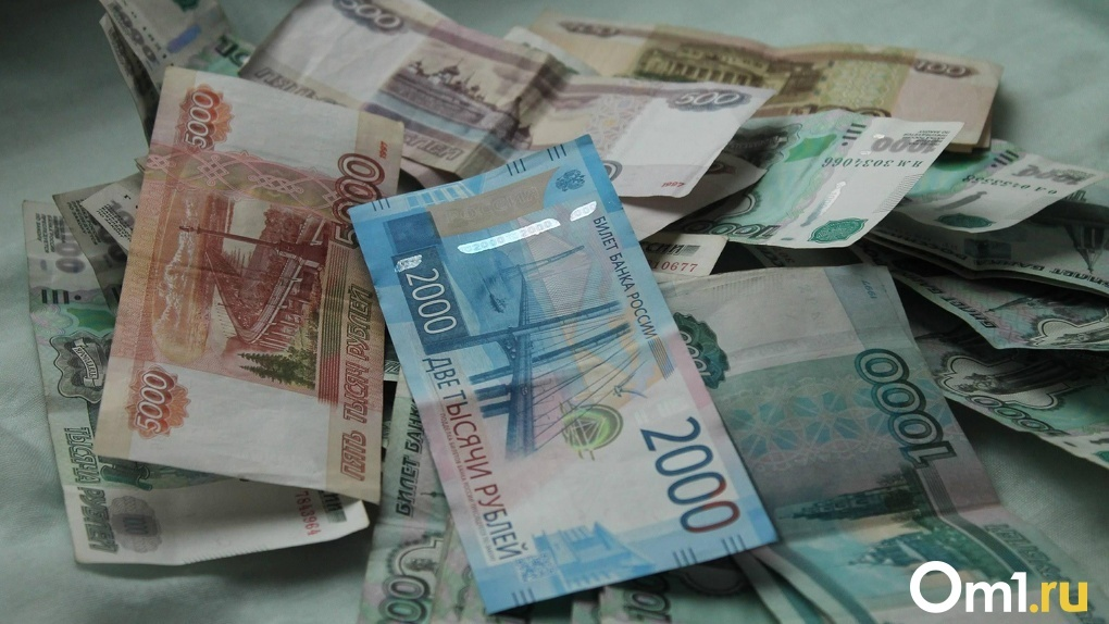 Глава ОмГУ отказался от премии в 300 тыс из-за того, что преподаватели вуза остались без зарплаты