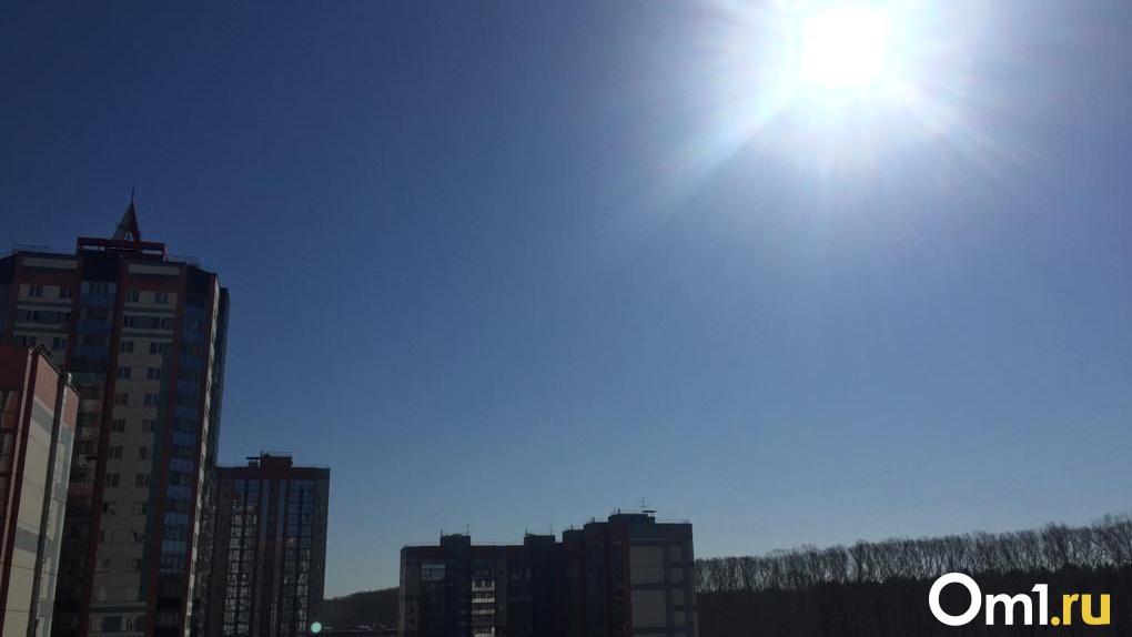 Резкое потепление на выходных прогнозируют новосибирские синоптики