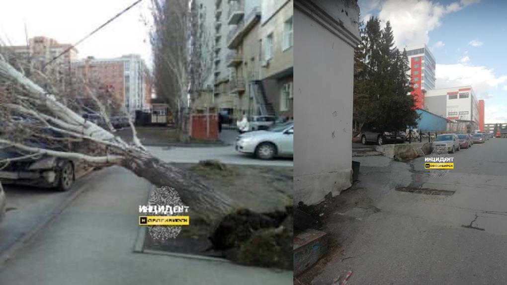 Из-за сильного ветра в Новосибирске пострадал припаркованный «Лексус»