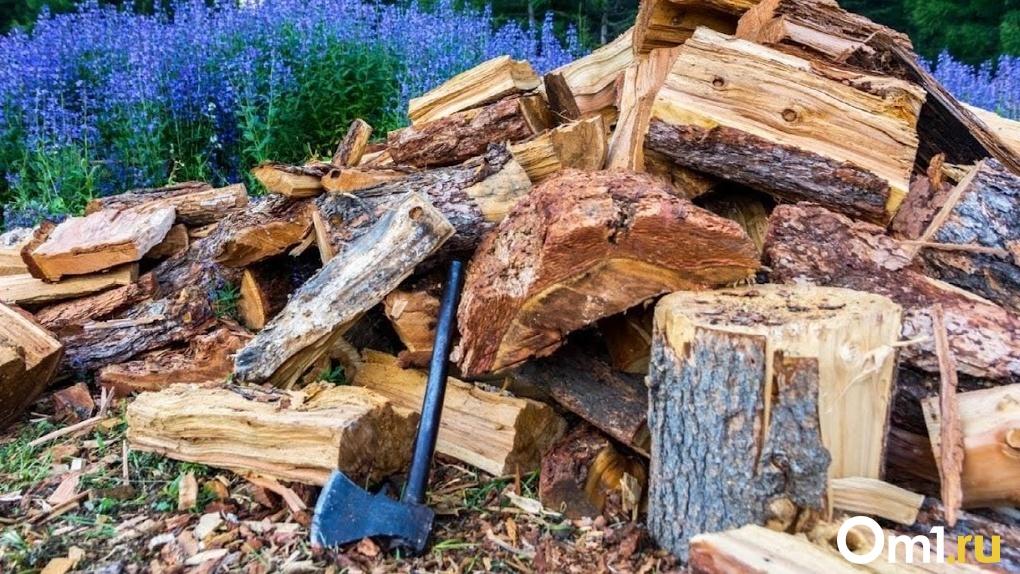 Более 160 домов в Омской области остались без отопления на зиму