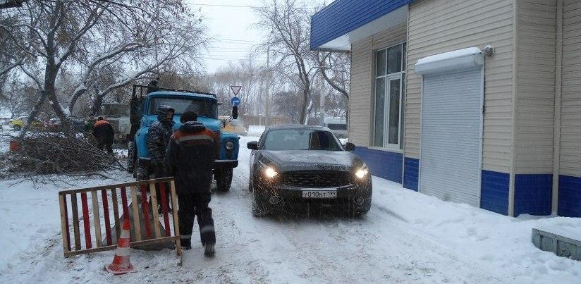 В Омске массово вырубают деревья перед прокуратурой Советского округа (ФОТО)