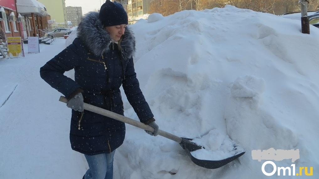 Весна в марте не наступит: аномальный снегопад прогнозируют новосибирские синоптики на месяц