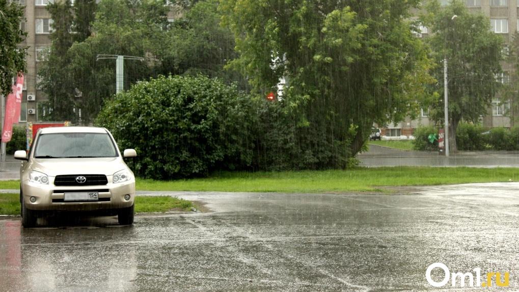 Гроза с ливнем зарядят в Новосибирске в последнюю неделю июля