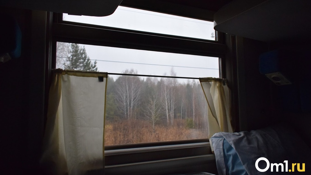 Из Омска хотят запустить прямой поезд в Крым