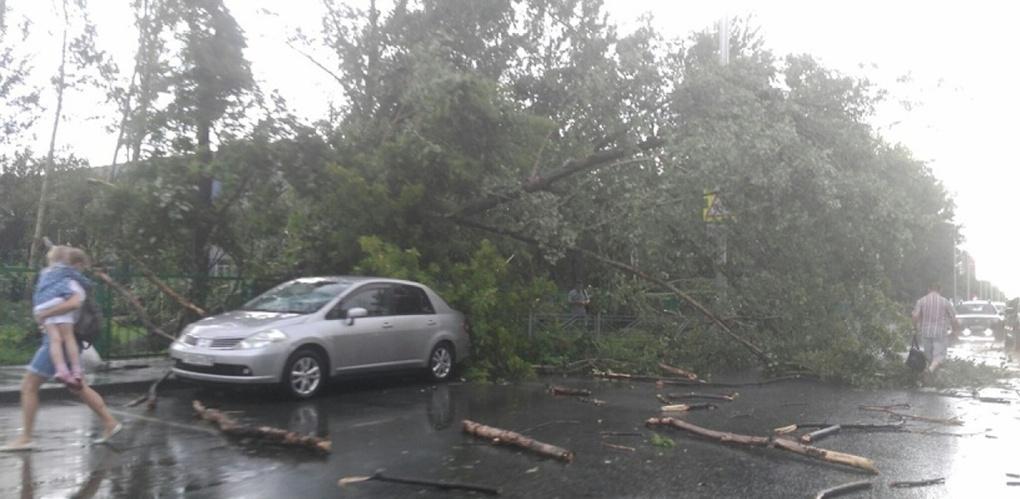 Прокуратура объявила проверку по поводу урагана в Омске