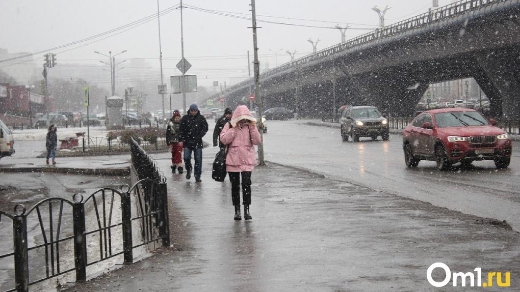 МЧС: в ближайшие часы на Омск обрушится страшный ураган со снегом