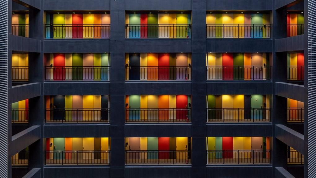 От бордо до блесток: двери какого цвета выбирают новосибирцы в 2020 году