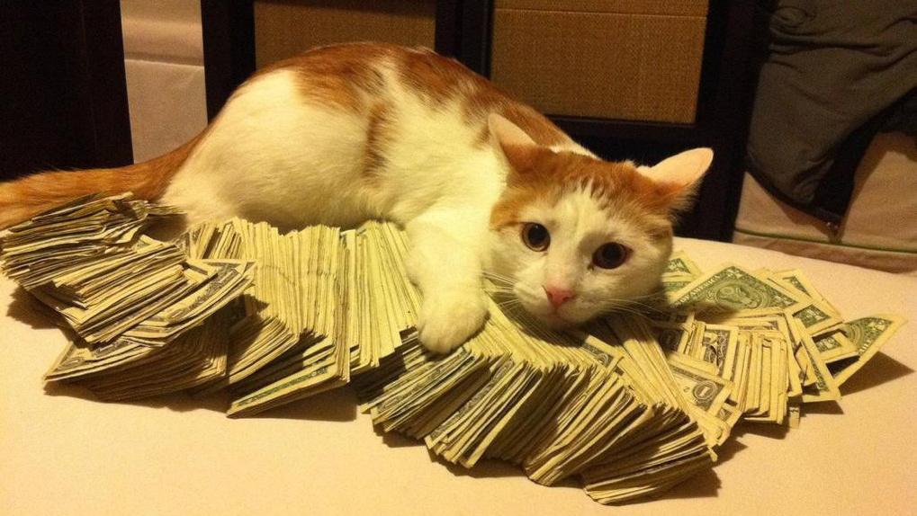 У омского кооператива «Продмассив» хотят забрать обратно миллионный грант