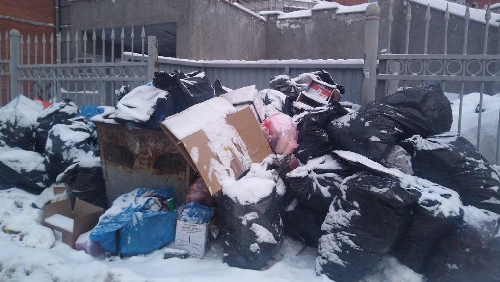 Жители Новосибирска пожаловались на мусорный коллапс во дворах