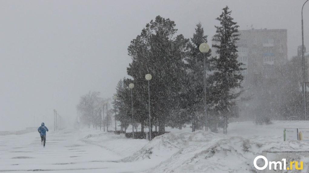 Звенит февральская вьюга: аномальный снегопад накроет Новосибирск