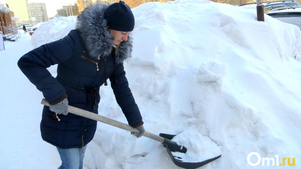 Аномальный снегопад обрушится на Новосибирск
