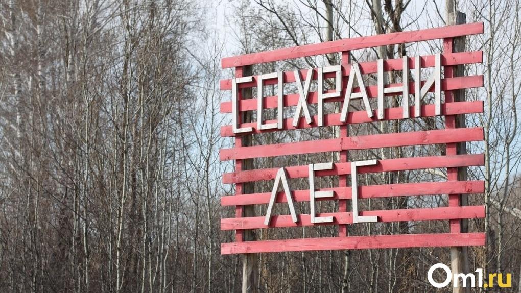 В Омской области за прошедшие сутки зафиксировано шесть лесных пожаров