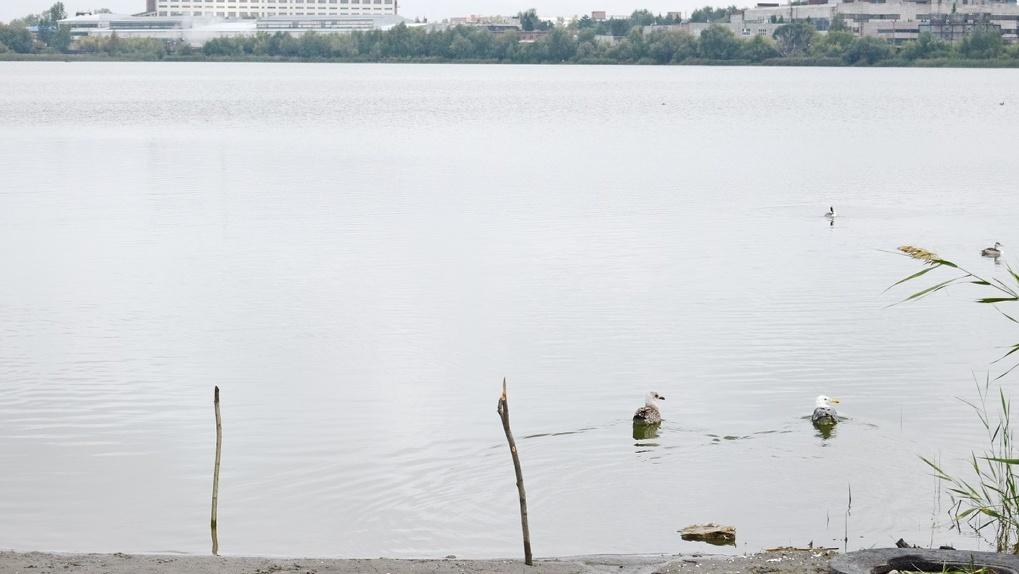 Волонтеры вместе с регоператором очистили от мусора берег реликтового озера