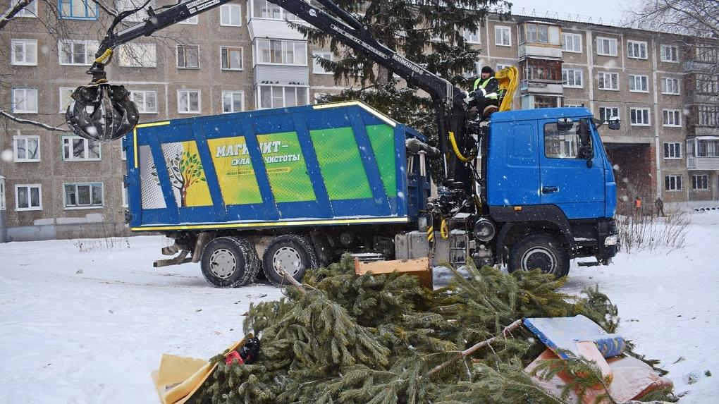 Новогодние елки из квартир омичей бесплатно вывезет регоператор