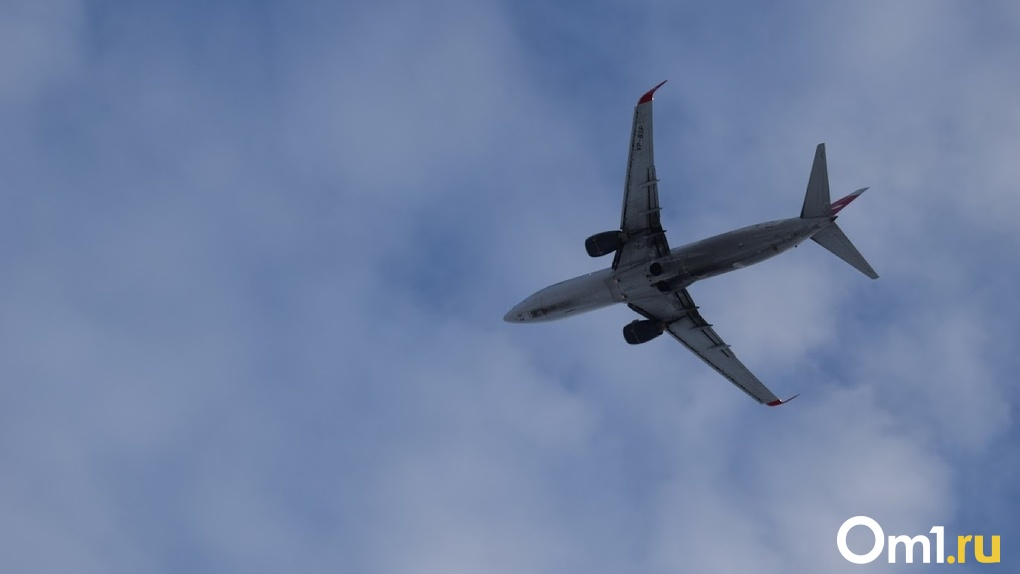 Омичи без пересадок смогут долететь до Балтийского моря
