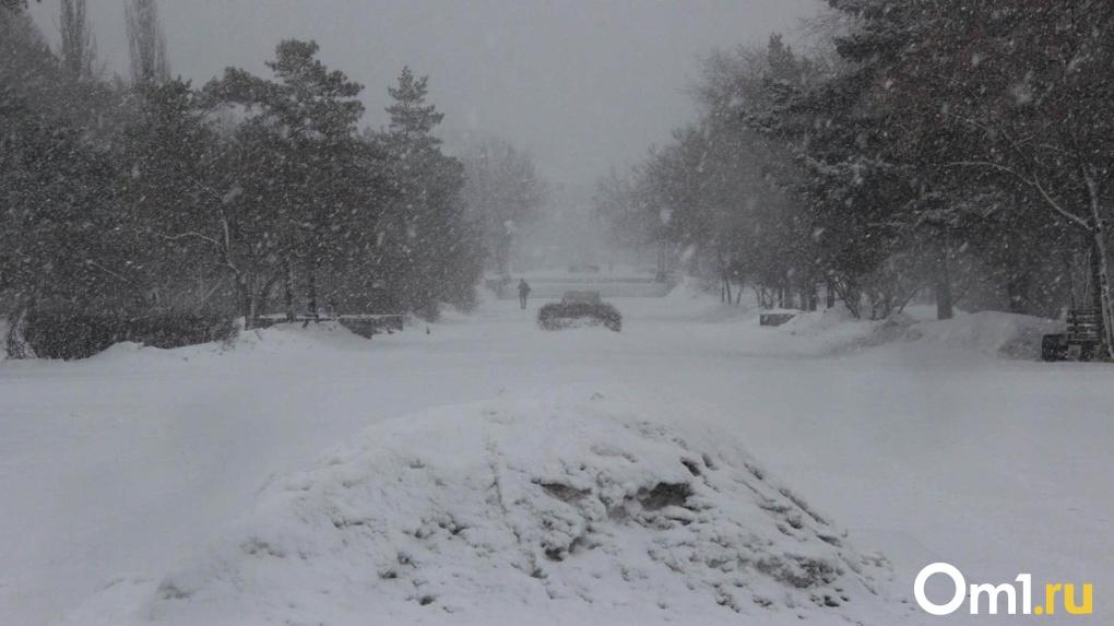 Неделю аномального снегопада прогнозируют новосибирские синоптики