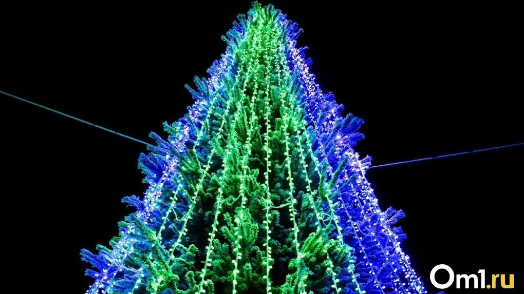 В Омске начали устанавливать первую новогоднюю ёлку
