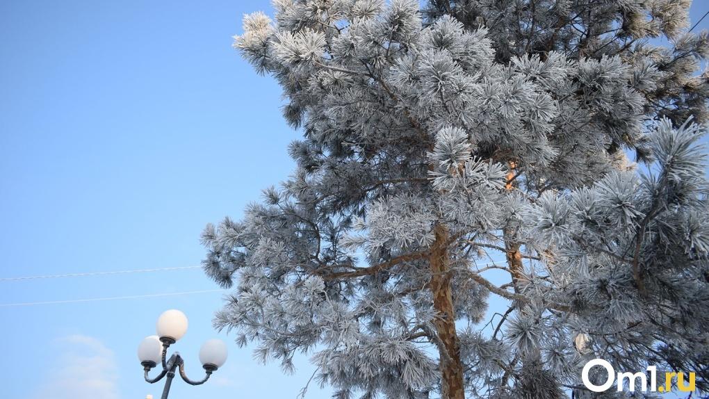 Морозно и солнечно. На выходных в Омске похолодает до -20 градусов