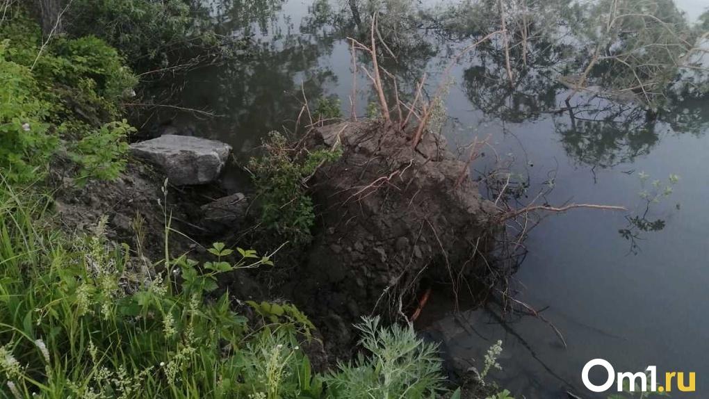 На грани катастрофы: новосибирские дачники заявили о разрушении земельных участков рекой (фотофакт)