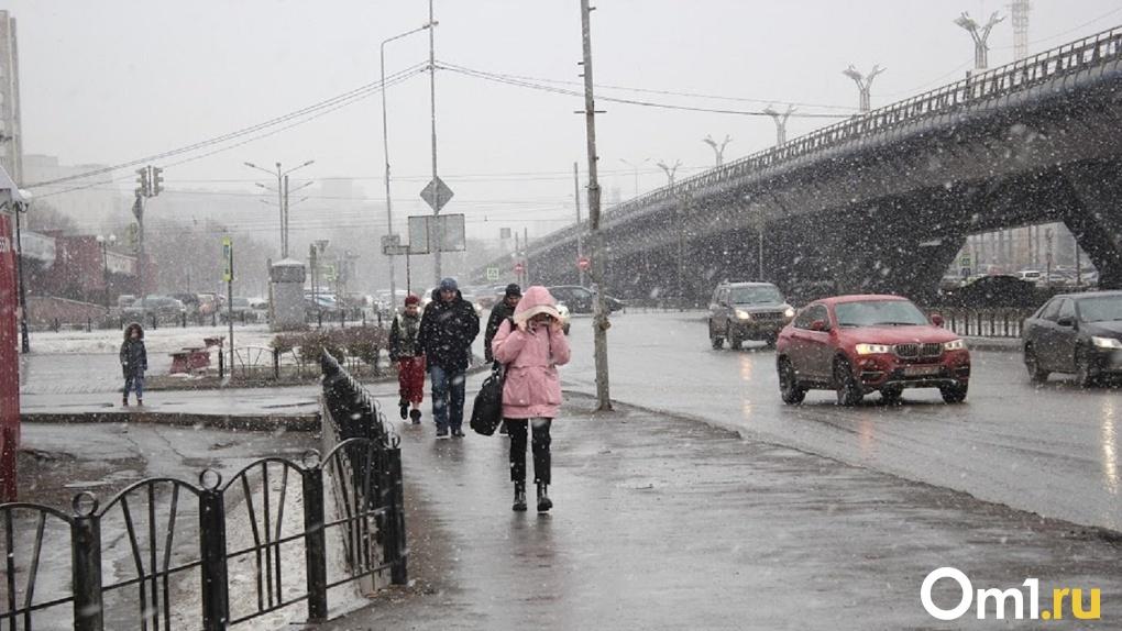 В Омске уже на этой неделе снова похолодает и продолжатся снегопады