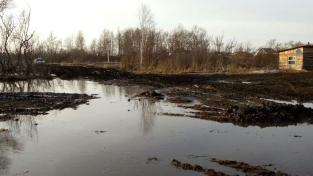Путину пожаловались на ужасные дороги в Омской области