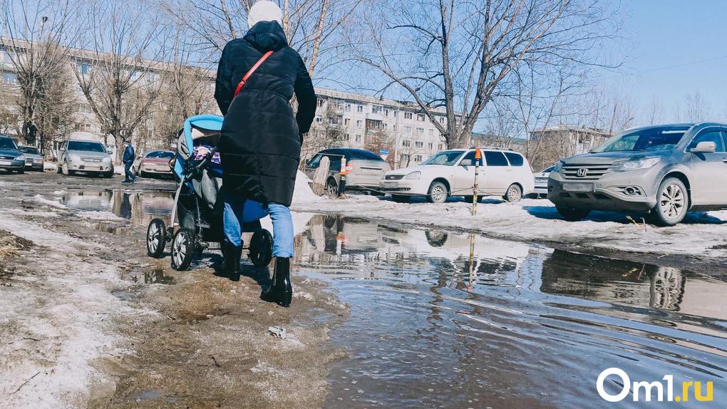 Нехватка денег и техники: мэр Новосибирска рассказал, почему город выглядит непрезентабельно