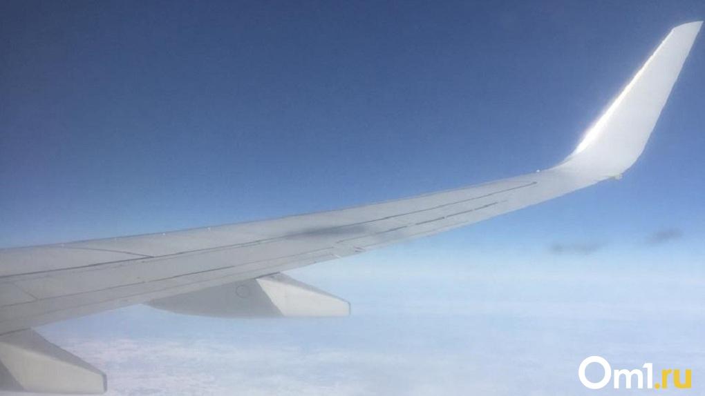 Двое пассажиров устроили дебош в самолёте «Новосибирск — Петропавловск-Камчатский»