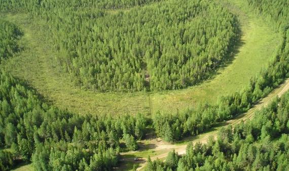«Черных лесорубов» из Омской области увидели из космоса