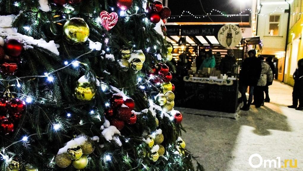 Пушечные залпы, деревянные игрушки и новогодний квест. Где можно отдохнуть на каникулах в Омске