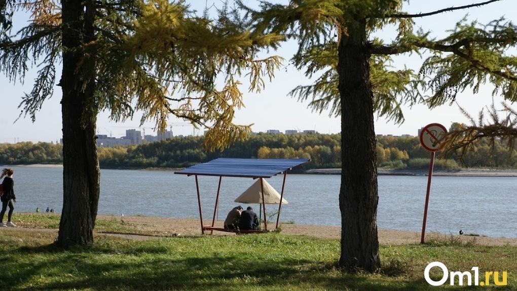 Тепло, как в Ташкенте. Омичей ждёт солнце и согретый ветер из Средней Азии