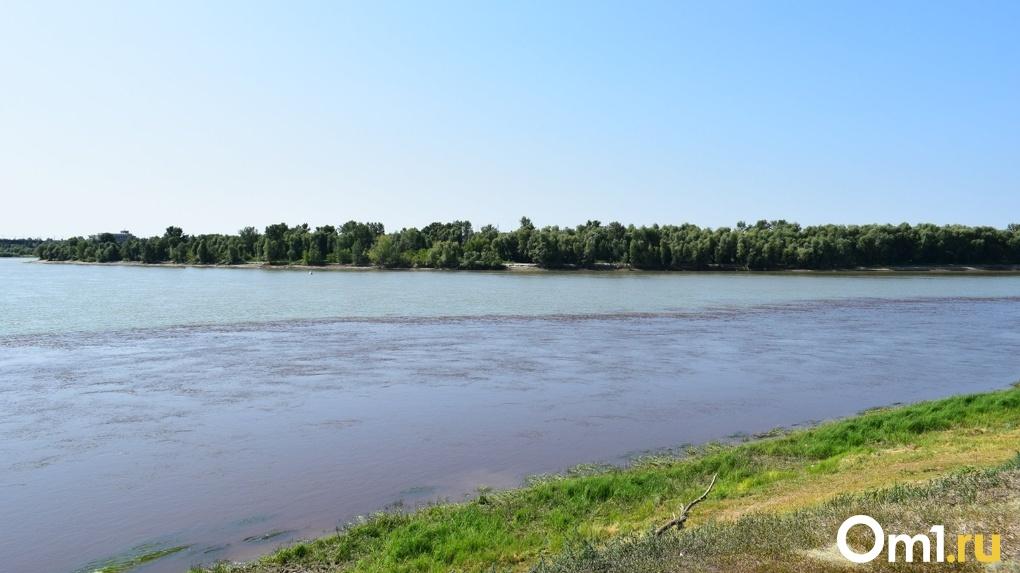 В Омской области пропавшего парня нашли мертвым в реке