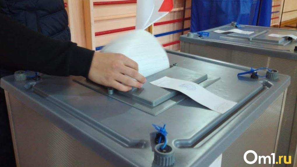 Стало известно, как будет выглядеть бюллетень голосования по поправкам в Конституцию (ФОТО)