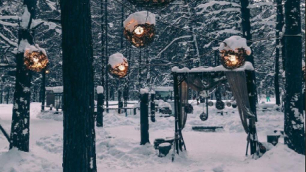 В Новосибирске появится особо охраняемый природный парк